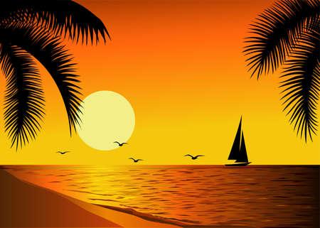 Beautiful sunset Vector