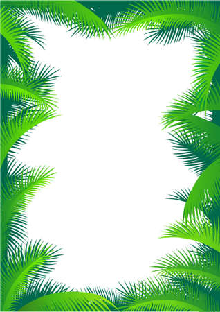 coconut palm: Palm tree frame Illustration