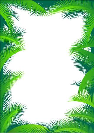 green leaves border: Palm tree frame Illustration
