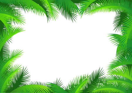coconut palm: Palm leaf frame