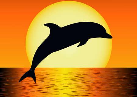 Delfín silhouettte