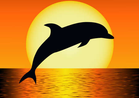dolphins: Dolphin silhouettte  Illustration