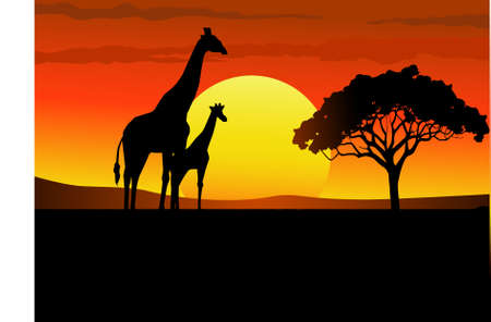 Safari Africa Vector