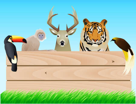 Animal and wood banner Stock Vector - 6987158