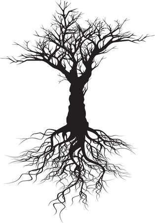 jungle vines: Tree silhouette