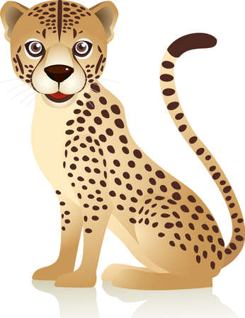 wildlife reserve: Cheetah cartoon Illustration
