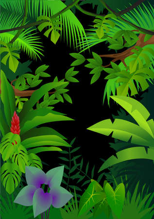 exotic butterflies: Forest background Illustration