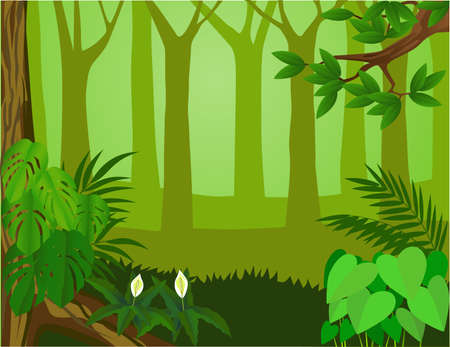 green forest: Forest