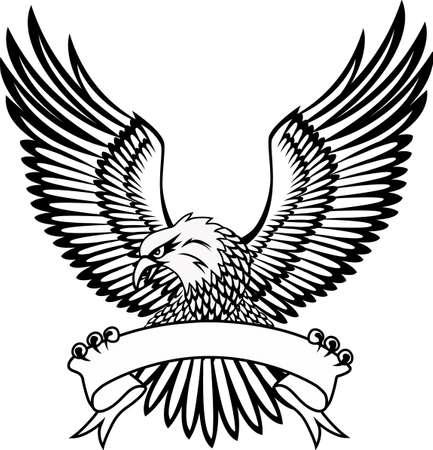 Eagle Stock Vector - 7512518