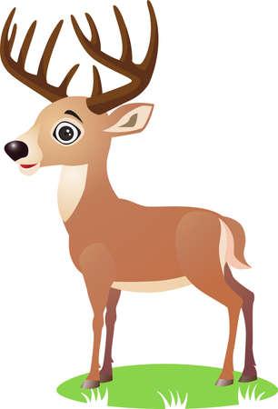 zvířata: Deer karikatura Ilustrace