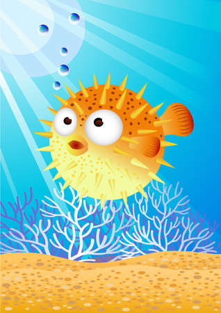 Puffer fish Stock Vector - 7529299