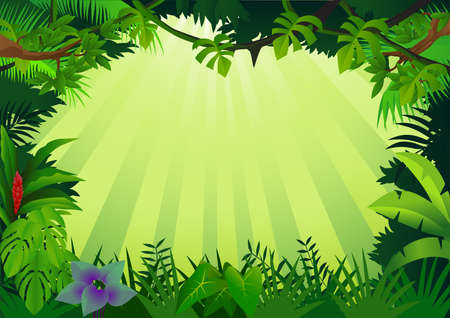 forest jungle: Forest background Illustration