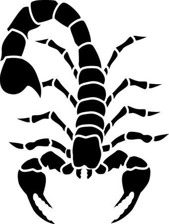 escorpio: Tatuaje de escorpi�n  Vectores