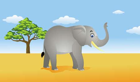land mammal: elephant in the savanna Illustration