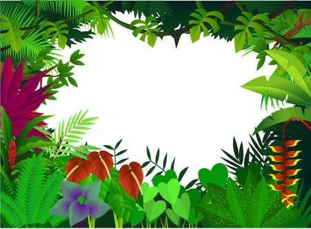 amazon forest: illustration beauty