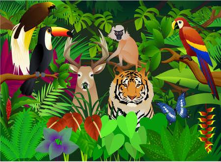 amazon forest: wild animal