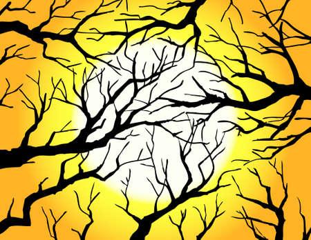 yew: dead tree silhouette