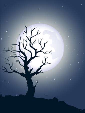 zypresse: toter Baum silhoutte