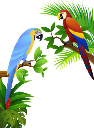 Parrot ilustration Stock Vector - 8427242