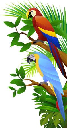 ilustration: Parrot ilustration
