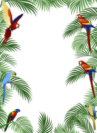 Parrot illustration Stock Vector - 8455229