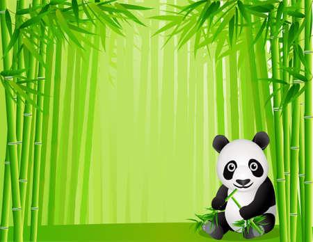 oso panda: Lindo panda en el bosque de bamb�