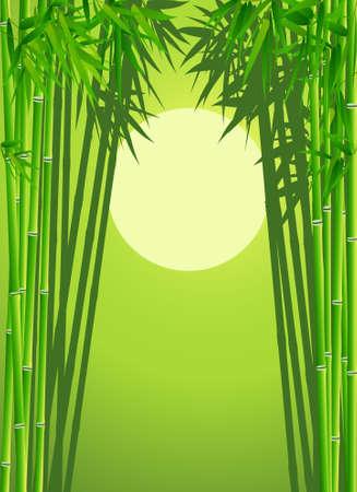 hoog gras: Bambo forest background Stock Illustratie