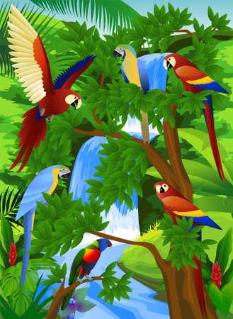 cartoon for�t: Perroquet dans la belle nature
