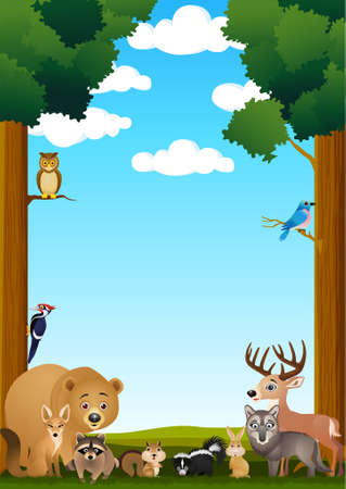 raton laveur: cartoon animaux sauvage Illustration