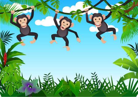 chimpanzee: Three chimpanzee Illustration