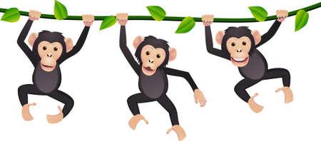 b�b� singe: Trois chimpanz�s