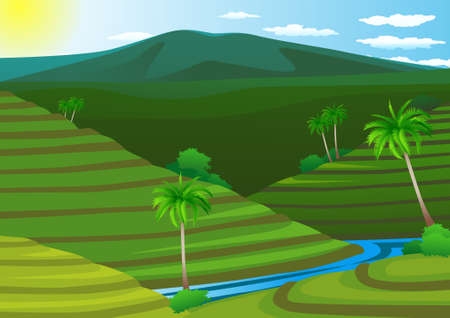 Rice field terrace Stock Vector - 8557733