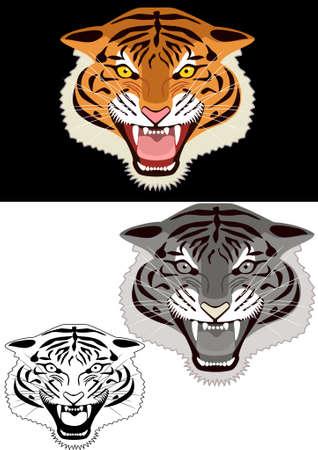 siberian tiger: Illustration of tiger head