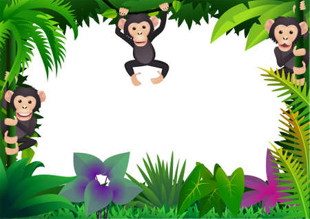 chimpanzee in the jungle Vector