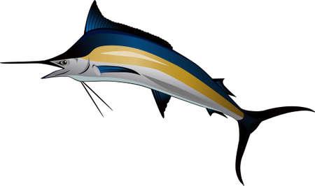 pez espada: Pez Marlin Vectores