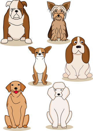 labrador retriever: Dog colection Illustration