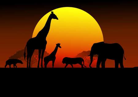 silhouetted: Safari Arica