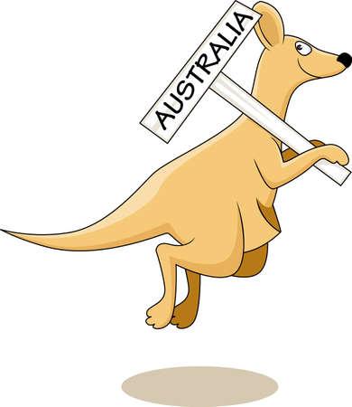 Kangaroo Australia Vector
