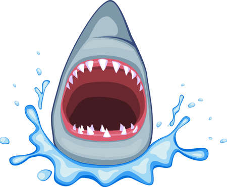 bad eyes: Shark Illustration