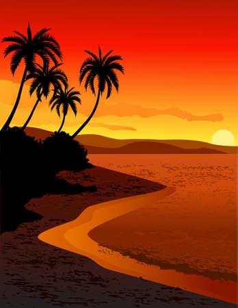 Puesta de sol tropical playa Ilustración de vector