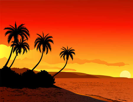 paradise beach: Beautiful tropical beach sunset