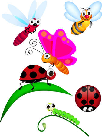 Cute insect Vector