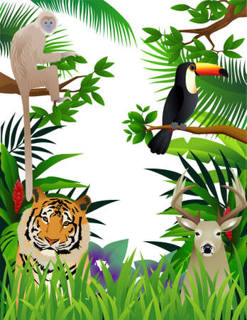 wild animal in the tropical jungle Vector