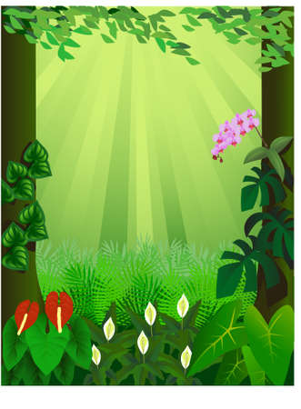 tropical forest background Stock Vector - 9145766