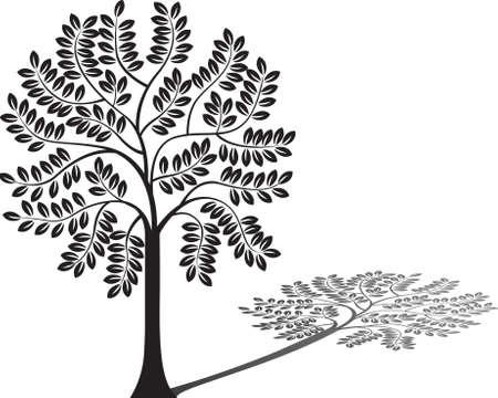 family gardening: Tree silhouette