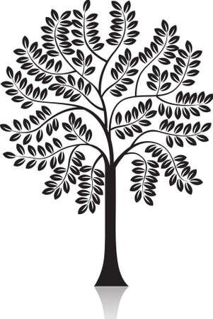 foglie di quercia: silhouette albero