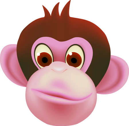 robust: monkey head