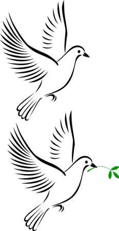 paloma: vuelo de Paloma Vectores