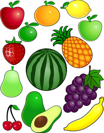 nectarine: fruit vector collection