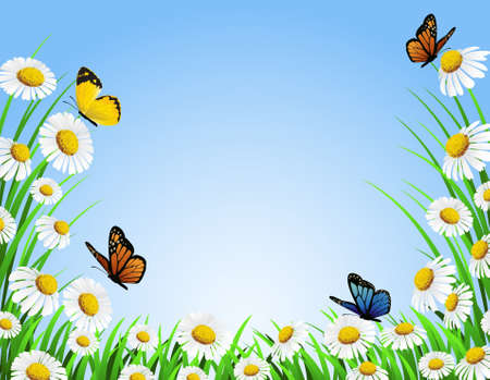 butterfly background: nature background